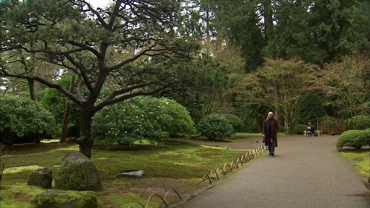 Visitors are now able to return to Portland's Japanese Gardens after a six month closure for construction, which will continue into next year. (KPTV)