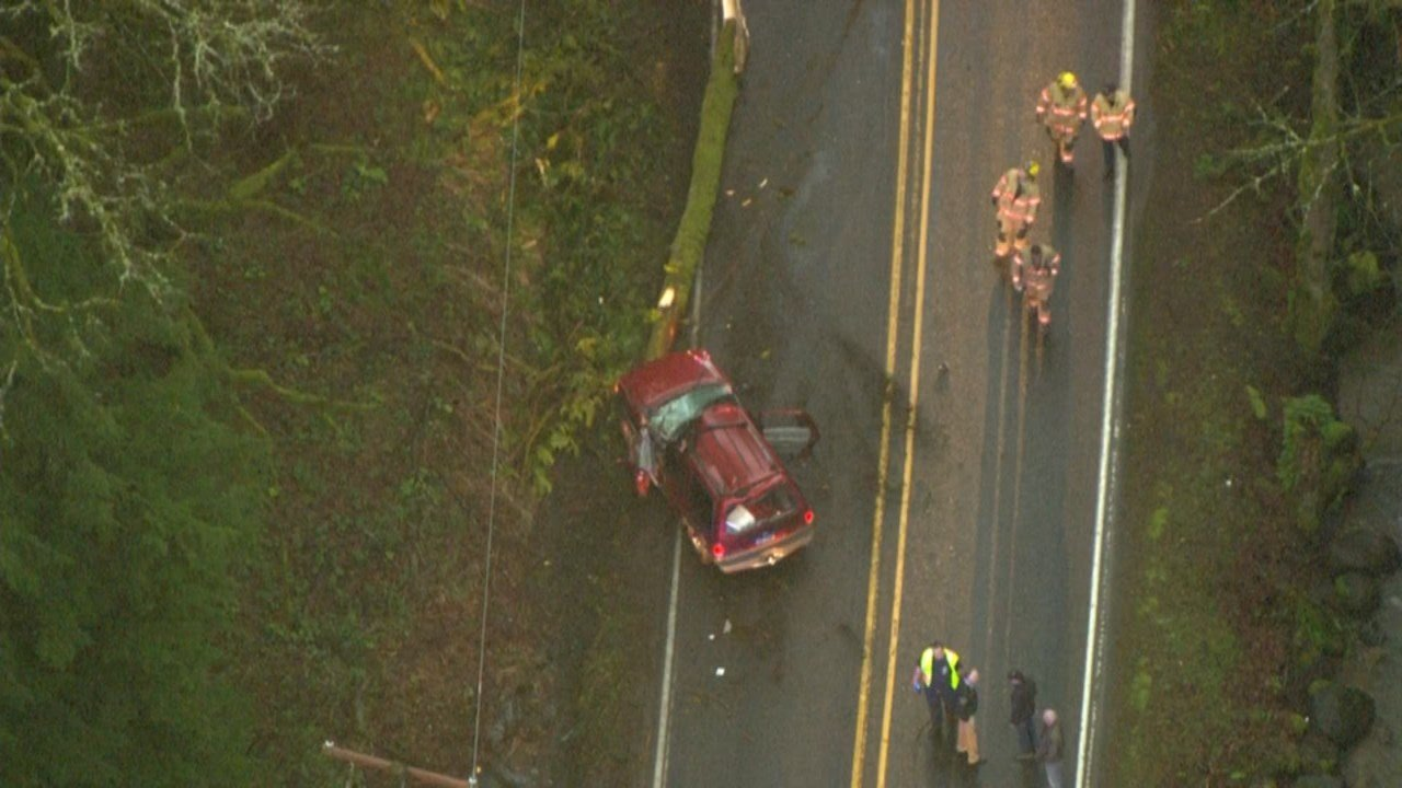 Crews worked to clear the scene after a tree fell on the SUV driven by Kristi Oliver, 30, killing her. (KPTV)