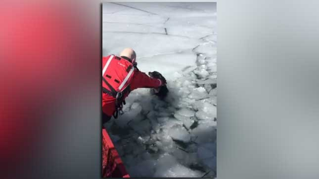 Screen grab from video (Source: Wasatch County Sheriff's Office/Facebook)