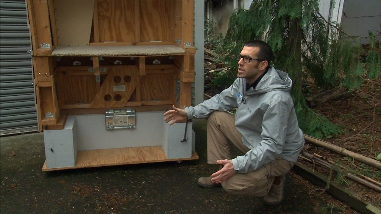 Ryan Clemmer of Enhabit explains the benefits to retrofitting a home with a seismic upgrade to protect it from damage during an earthquake. (KPTV)