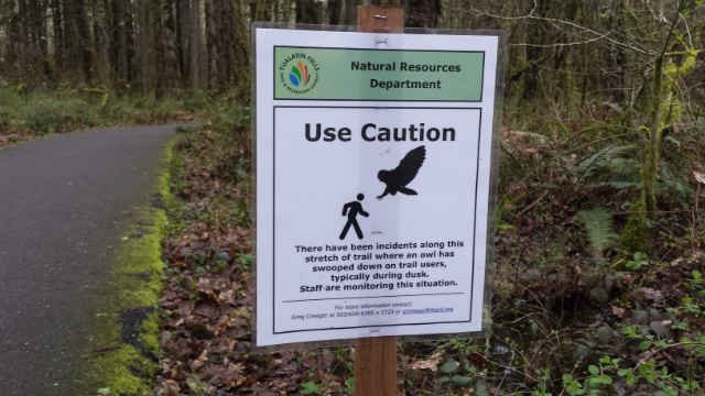 (Courtesy: Tualatin Parks and Recreation)