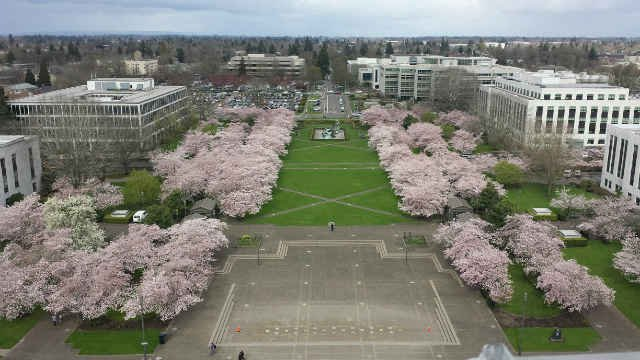 View from the observation platform at the Oregon State Capitol. (Courtesy: Stacy Nalley)