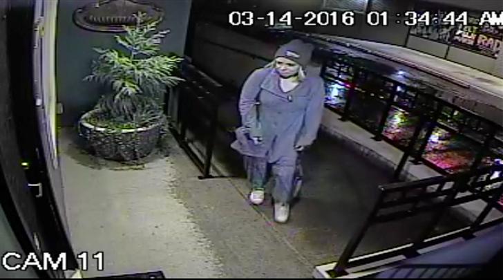 Burglary suspect caught on surveillance video on March 14.