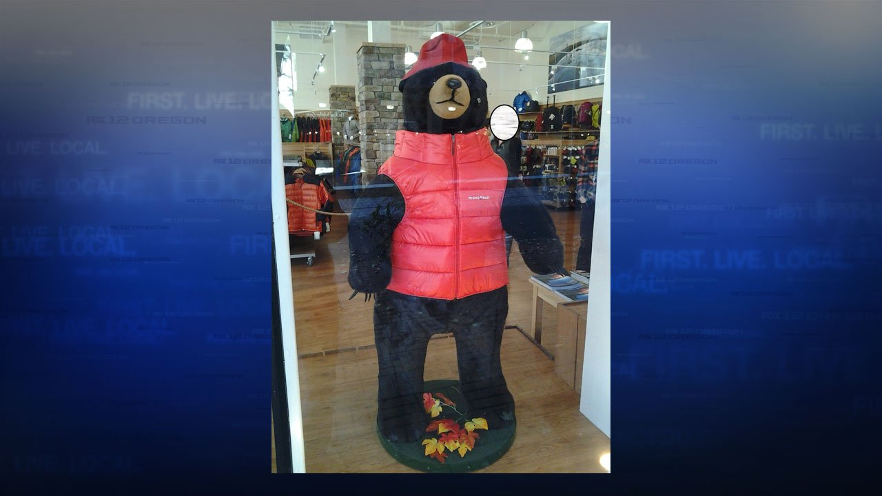 The PPB are looking for a thief who stole the custom jacket off of this stuffed bear from in front of the Mont Bell store in Portland. (PPB)