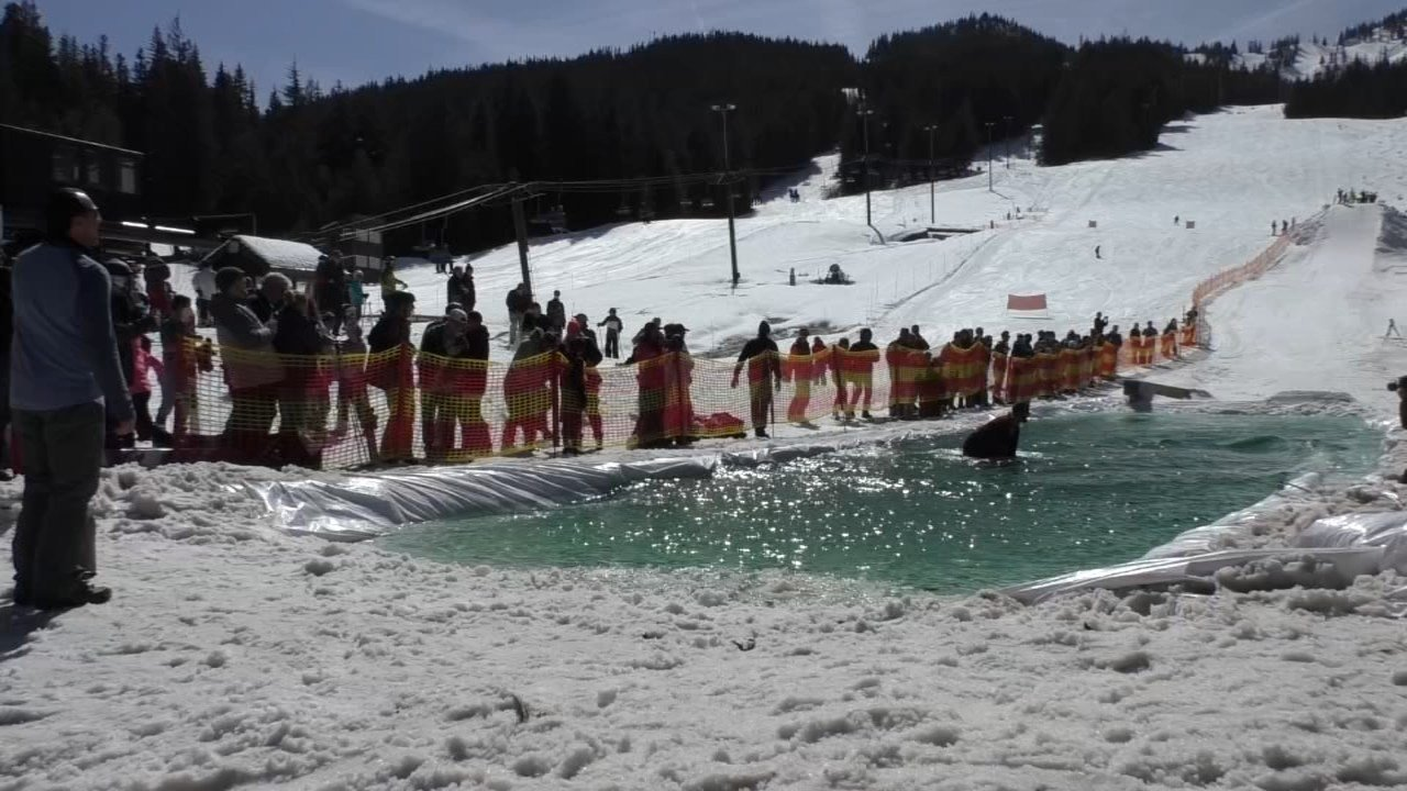 Participants gather for the annual pond skimming contest at Ski Bowl