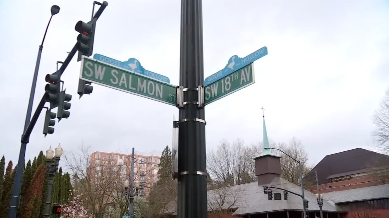 Officers with the PPB are looking for a suspect accused of brutally attacking a woman near SW Salmon St. and SW 18th Ave. Friday night. (KPTV)