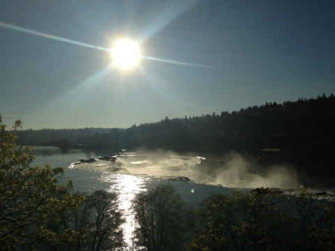 Willamette Falls (KPTV)