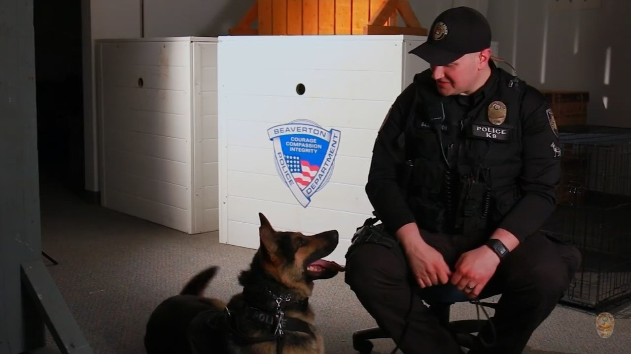 Officer Matt Barrington and K-9 Atlas. (Courtesy: Beaverton Police Department)