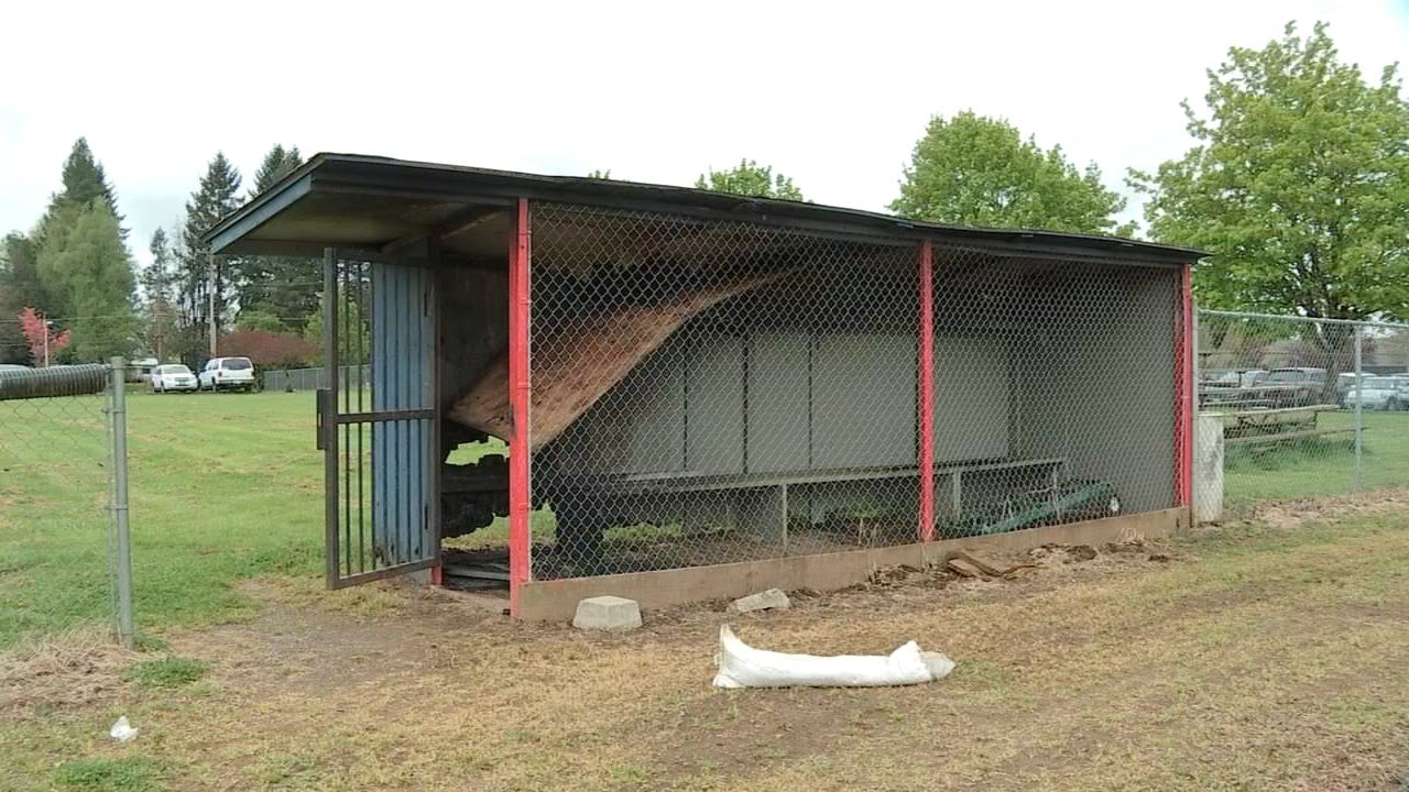 Damage done to a dugout after a fire was started on Friday. (KPTV)