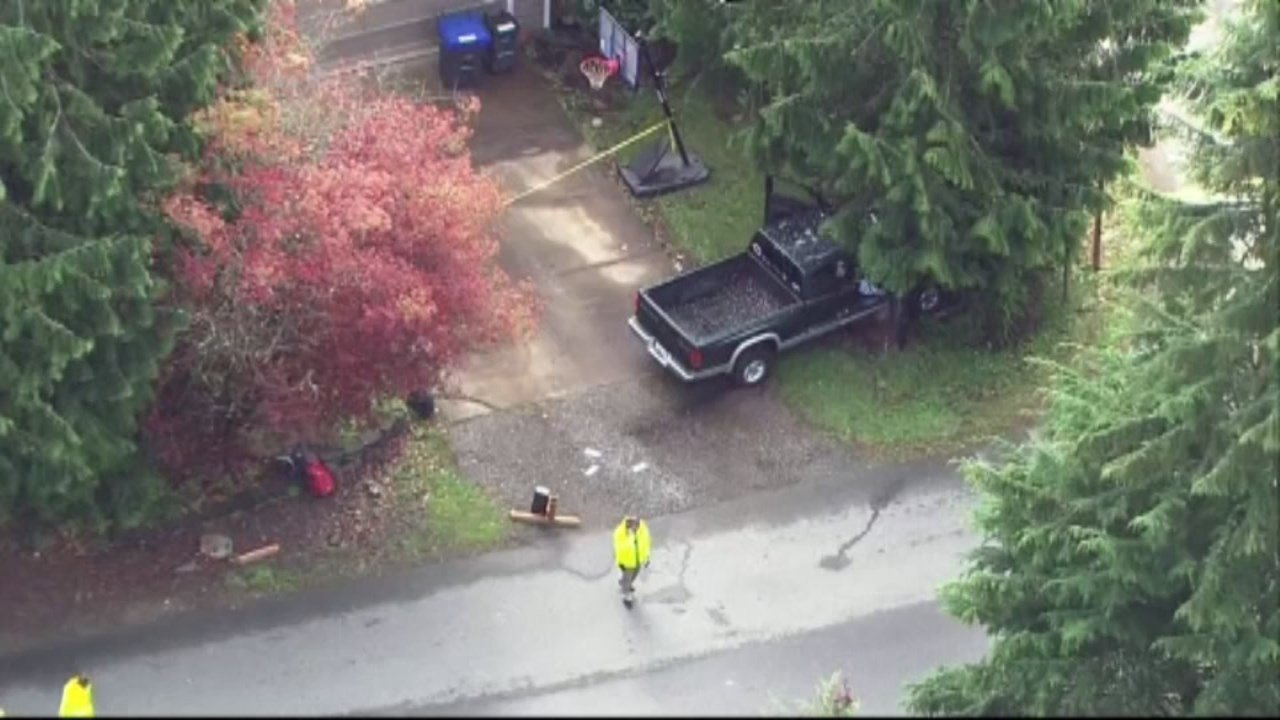 According to fire officials, the driver of the truck lost control due to a medical issue, then struck children waiting in line for the school bus in Maple Valley, Wash. (KIRO)