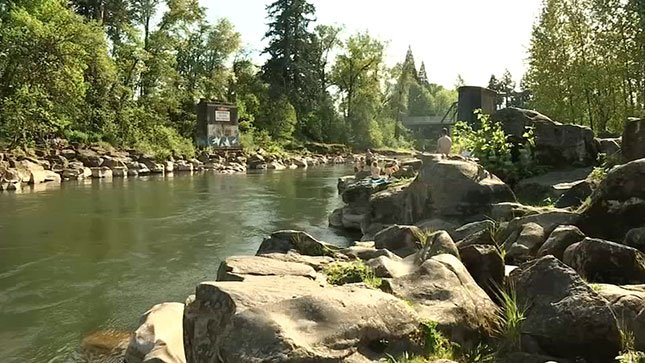 Sunday's warm weather had people flocking to the Portland area's swimming holes to soak in the sun and cool off in the water.