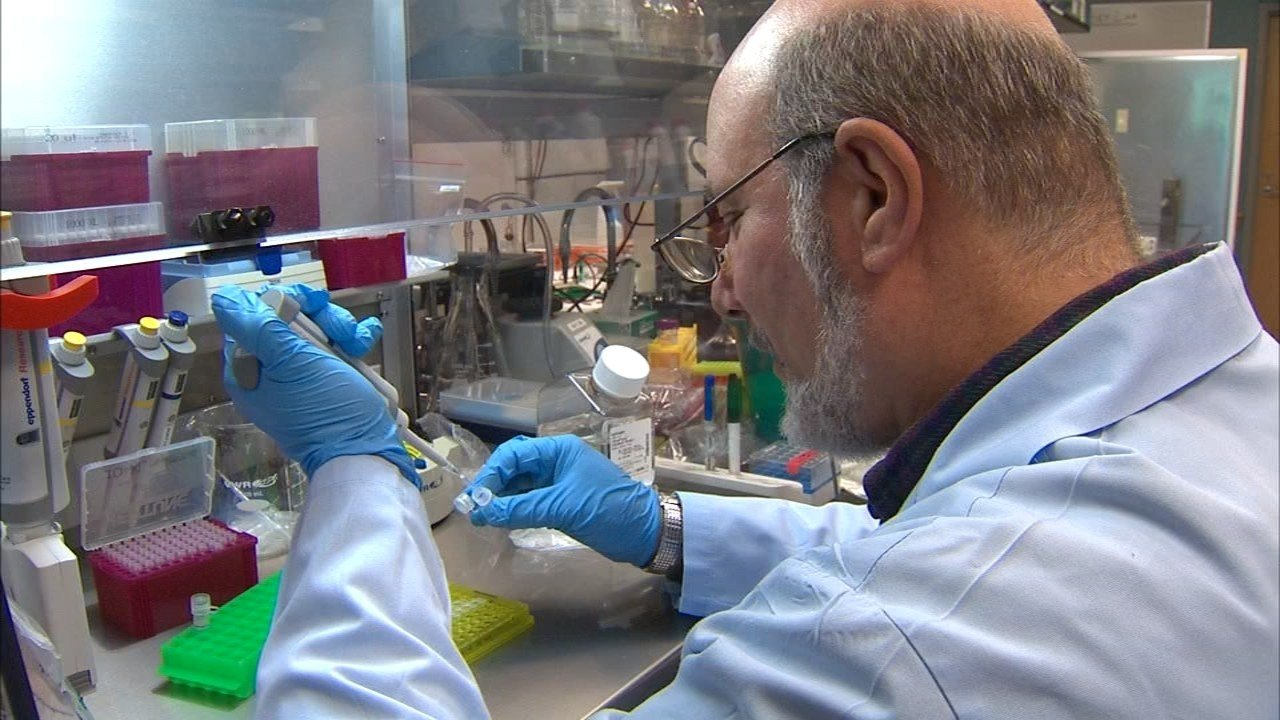 Researchers at OHSU will participate in the SPARK autism research project, which hopes to create a database of more than 50,000 autism cases across the U.S. (KPTV)