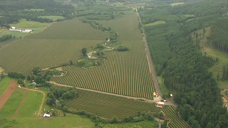 Air 12 over search area