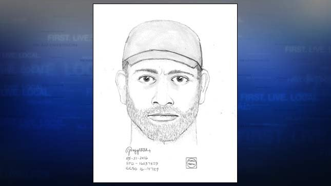 Sketch of the suspect (St. Helens Police)