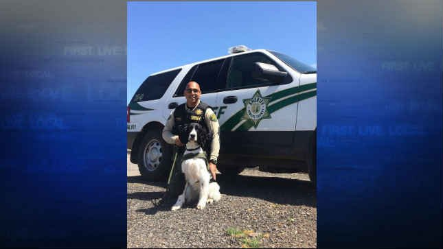 Narcotic Detection K9 Kelo and his handler, Deputy Ness Aguilar (Courtesy: Cowlitz County Sheriff's Office)