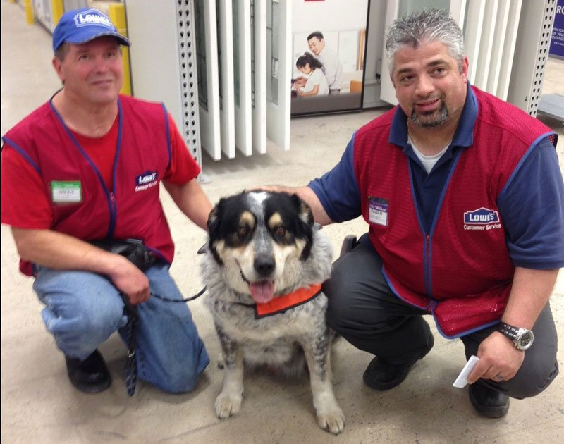 Owen Lima and his service dog, Blue, are the newest recruits at a Lowe's home improvement store in Canada. (Photo: Lowe's)