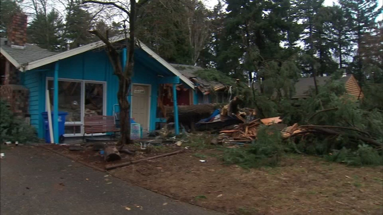 A woman was killed when a tree fell on a house in southeast Portland in December 2015 (KPTV file image)