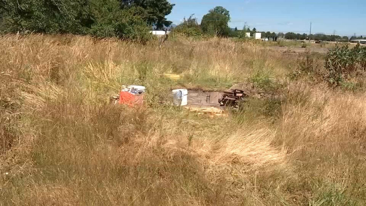 Paint and some wood that the thief left behind after stealing a community garden shed. (KPTV)