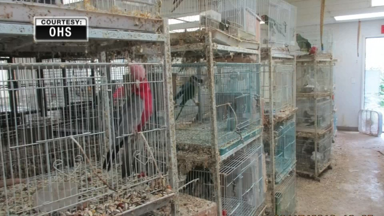 Cages were stacked three to four high and had not been cleaned since last spring. (Courtesy: Oregon Humane Society)