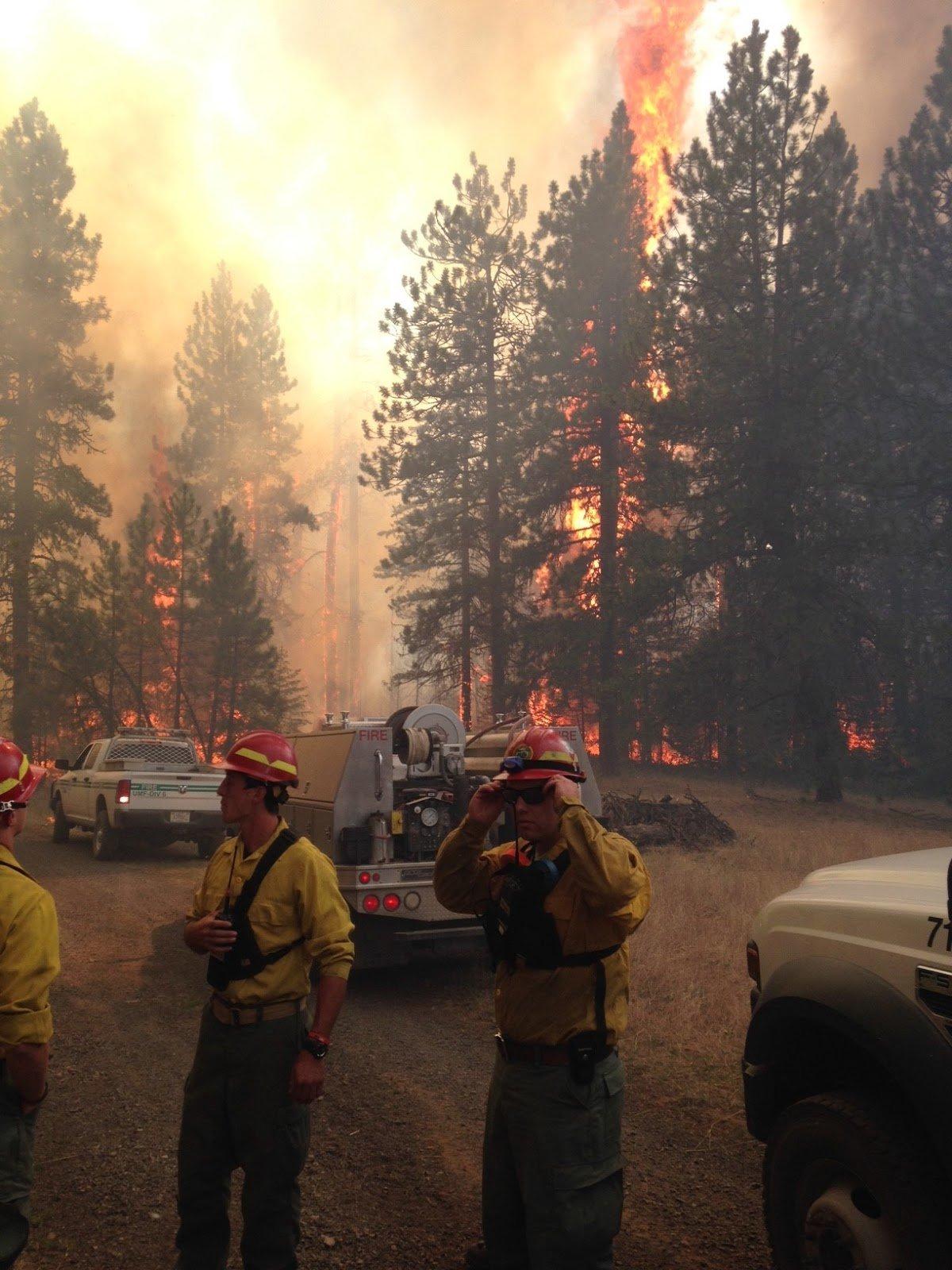 Photo Credit: John Buckman, Oregon Dept of Forestry