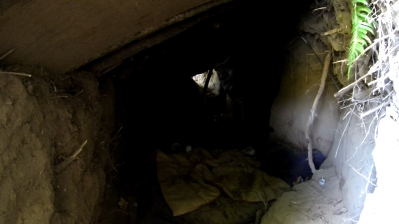 Homeless camp tunnel in Albany (Source: KPTV)