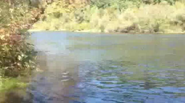Lewis River (KPTV file image)