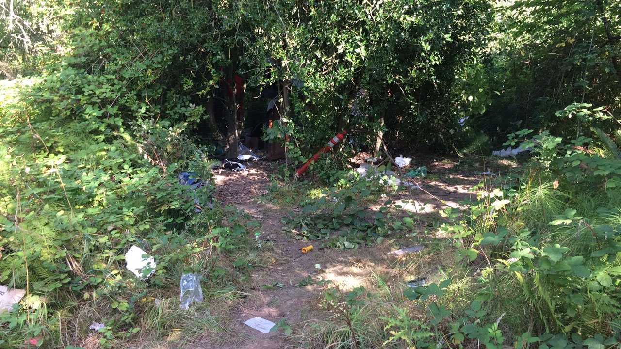 Clark County deputies said the area where a body was found in Hazel Dell is often frequented by transient campers. (Clark Co. Sheriff's Office)