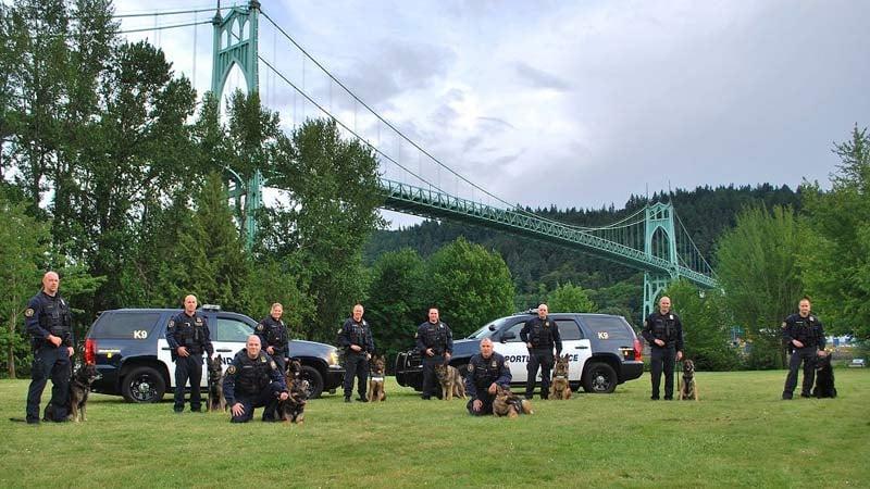 Portland Police Bureau K-9 teams (Photo: Portland Police Bureau)