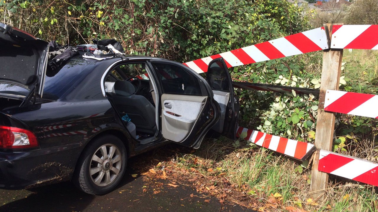 Deputies with the Washington Co. Sheriff's Office said a driver led them on a short chase after a routine traffic stop before diving out of his still-moving car as it was headed down a dead end street. (KPTV)