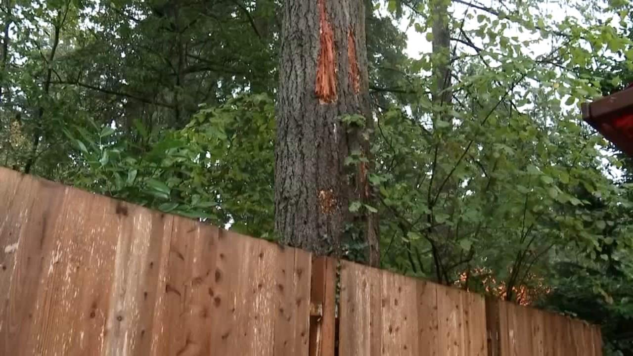 Damage done to Steve Aldrich's backyard (KPTV)
