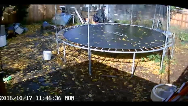 An image from security footage, showing the man behind the trampoline. (KPTV)