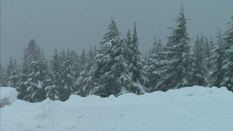 Snow falls at Mount Hood's Timberline Lodge on Tuesday, Oct. 18.