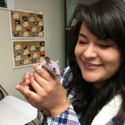 Animal Care Technician Selene Mejia with Silky (Courtesy: Oregon Humane Society)