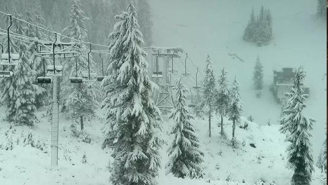 Picture from Mt. Hood Skibowl camera (KPTV)