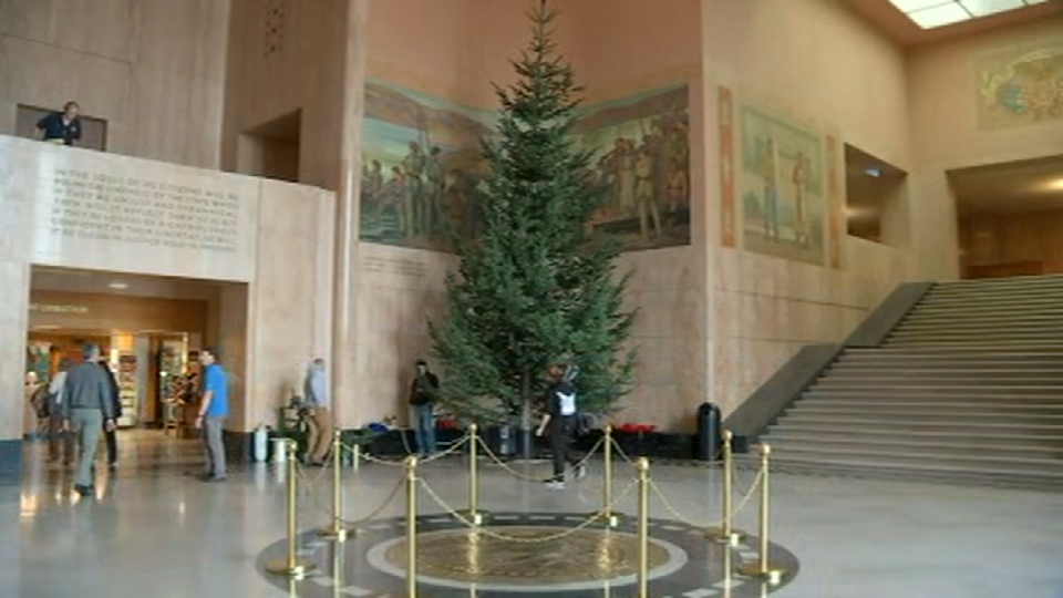 A 30-foot-tall Noble fir, harvested from the Clatsop State Forest, arrived in the capitol rotunda Thursday morning.