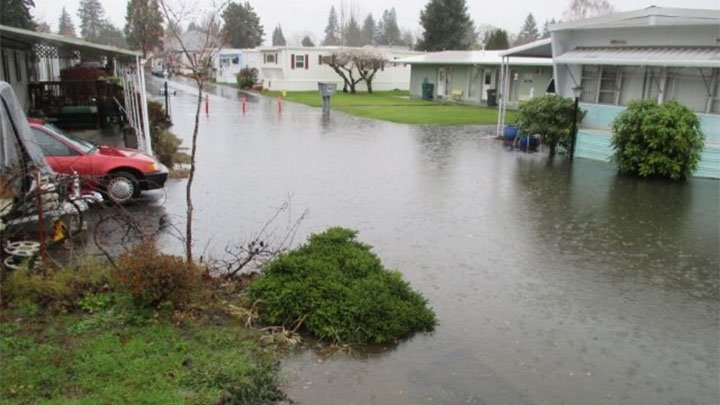 Residents of the Glen Tualatin Mobile Park say that drains in the park continually clog and flood the area around their homes. (KPTV)