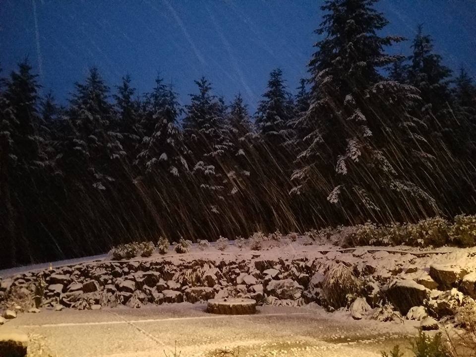 Snow in Vernonia (Courtesy: FOX 12 Viewer Laurie)
