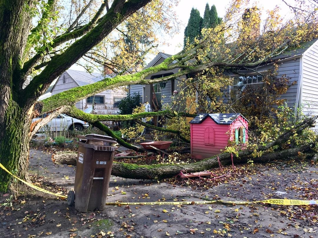 A home where limbs fell onto the roof in North Portland.