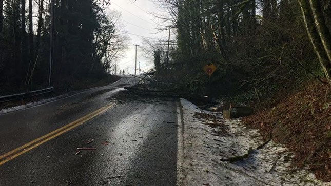 (Courtesy: Portland Bureau of Transportation)