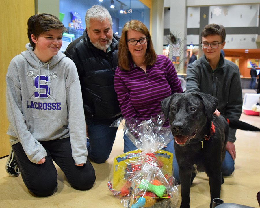 Remington, a lively black Labrador puppy, became the 11,000th animal adopted at the Oregon Humane Society in 2016 Saturday. (Oregon Humane Society)