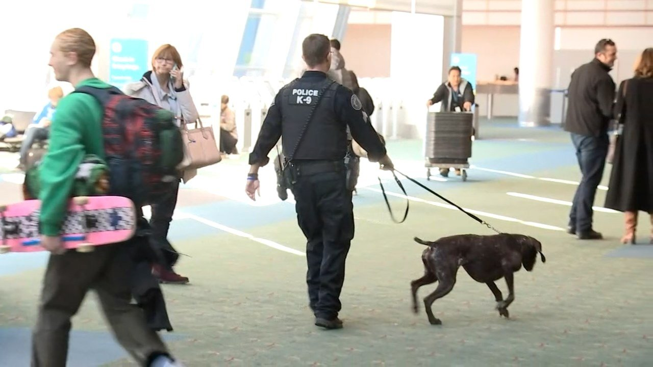 A Portland Police Bureau K-9 team at Portland International Airport on Friday. (KPTV)