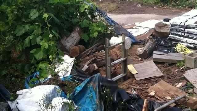 Ladder to backyard bunker outside NE Portland home of Gary Lewis. (Photo: Portland Police Bureau)