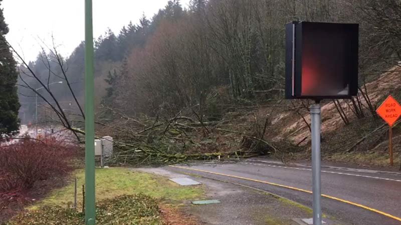 Landslide at Highway 26 onramp at Oregon Zoo. (KPTV)