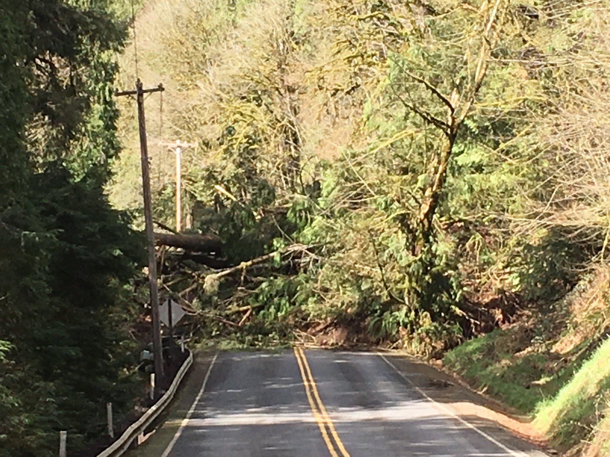 The landslide covering Kalama River Road.