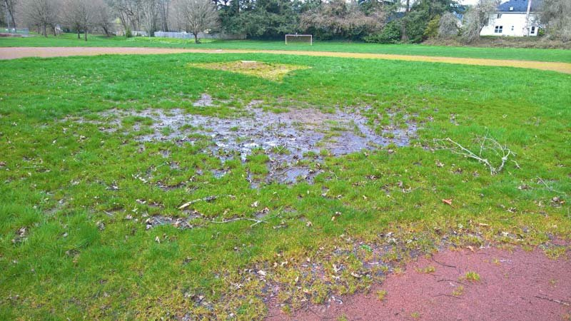 Unplayable conditions at Pendleton Park's baseball field. Photo courtesy: Portland Parks & Recreation.