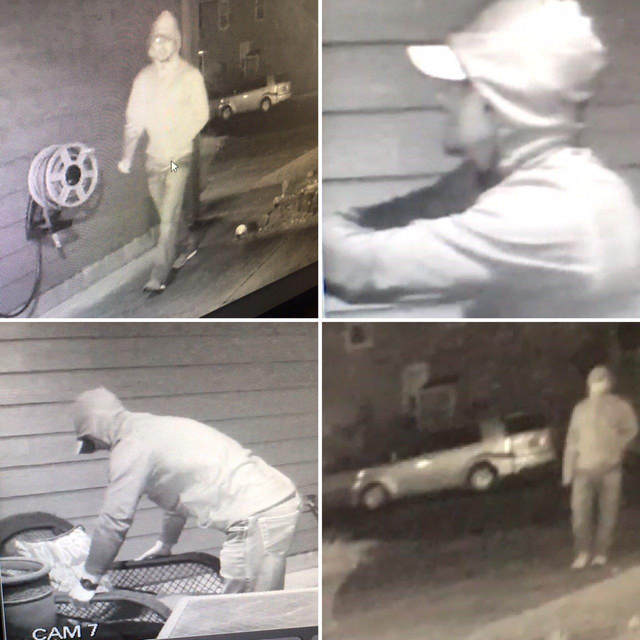 Surveillance images of Salem theft suspect. (KPTV)