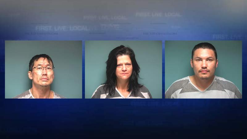 Jeffrey Bledsoe, Adrianne Santrizos, Brian Bledsoe (Jail booking photos)