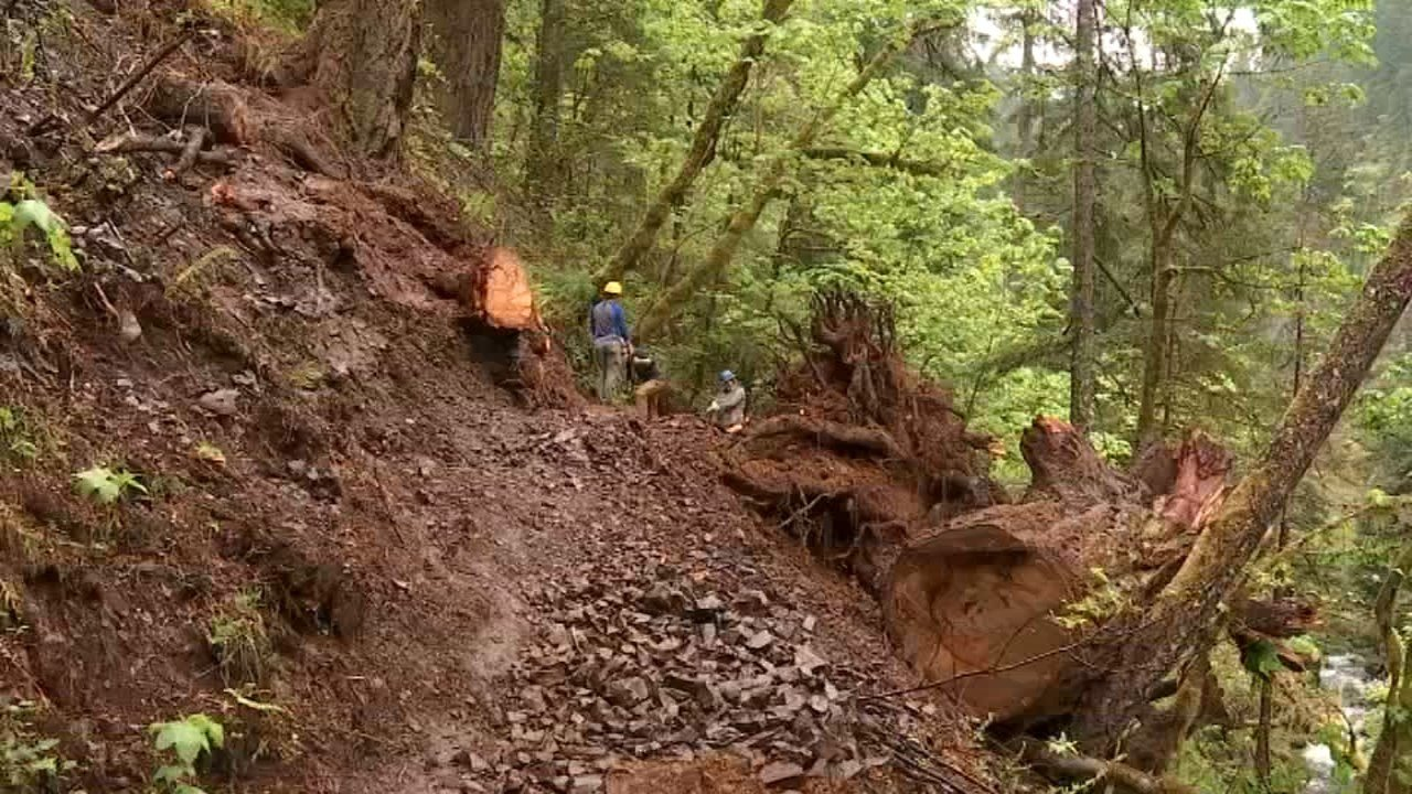 Forest Service busy cleaning up trails in Columbia River Gorge after stormy winter