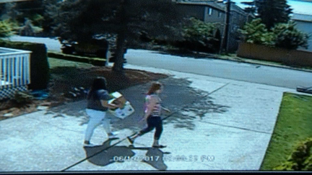 Caught on camera thieves steal packages from porch of for Aloha package homes