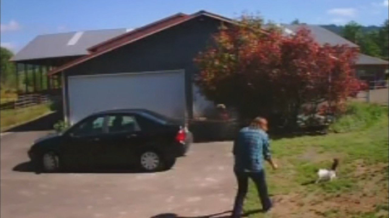 Surveillance image of cat theft suspect in Newberg. (KPTV)